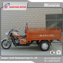 WUXI factory direct the supplier hot sale Cargo 3 wheel motorcycle heavy duty truck/Cargo adult tricycle for sale