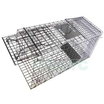 Haierc Foldable Single Door red squirrel traps live trap squirrel possum traps for sale