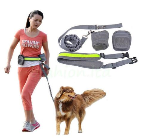 Hands Free Dog Leash For Running Walk Multiple Waist Bags with Adjustable Strap