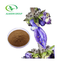 High Quality Coleus Forskohlii Plant Extract Forskolin Powder