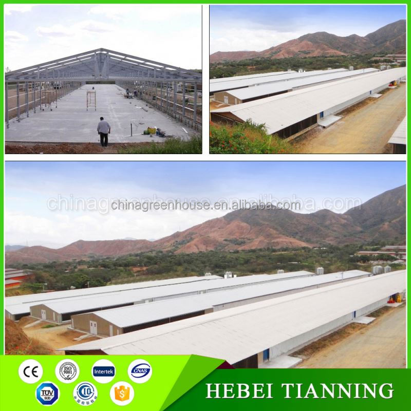 Chicken house poultry farm building turnkey poultry projects