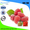 Supply Raspberry keton 5471-51-2