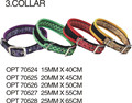 ORIENPET & OASISPET Pet collar fruit color Ready stocks OPT70524 Pet products