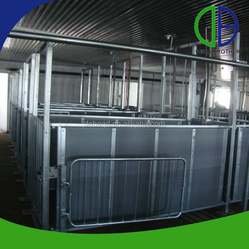 Made In China Hot Dip Galvanized Pig Cages Pig Breeding Equipment