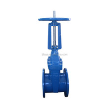 Rising stem gate valve with blue body