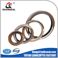 PTFE rotary shaft lip seals