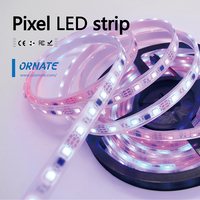 Dream Colour Led Strip 5050 5V 12V Programmable Magic 144leds Ribbon ws2812/WS2812B Led Digital Strip