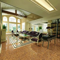 High quality Competitive price Porcelain kitchen tiles in china
