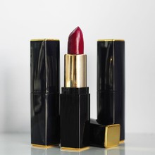 high quality private label herbal ingredient lipstick with reasonable price