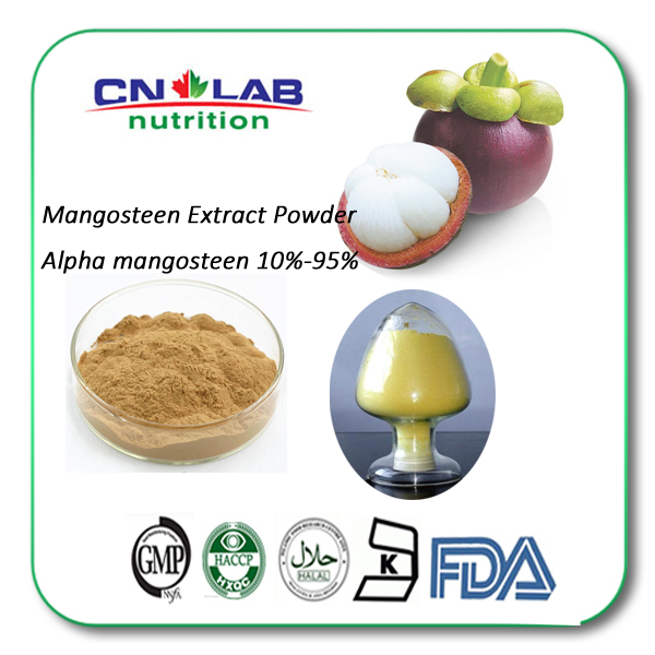 Factory Supply Mangosteen Peel Extract Powder With Free Sample 10-20g