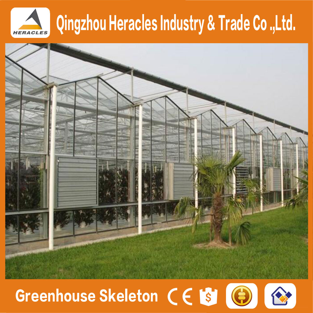 China factory price trade assurance venlo type glass agricultural greenhouse for tomato and mushroom