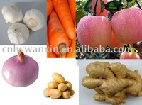 sell chinese fresh vegetable and fruits