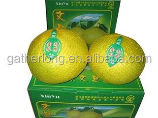 Import Fruit Fujian Guanxi Honey Pomelo