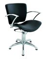 All Purpose Styling Chair With Headrest Stainless Steel Salon Station