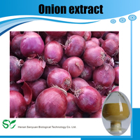 Factory Supply High Quality Red Onion Extract Quercetin