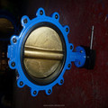 Series F171 Lug Type Butterfly Valve
