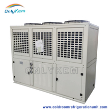 freezer room compressor,condensing unit