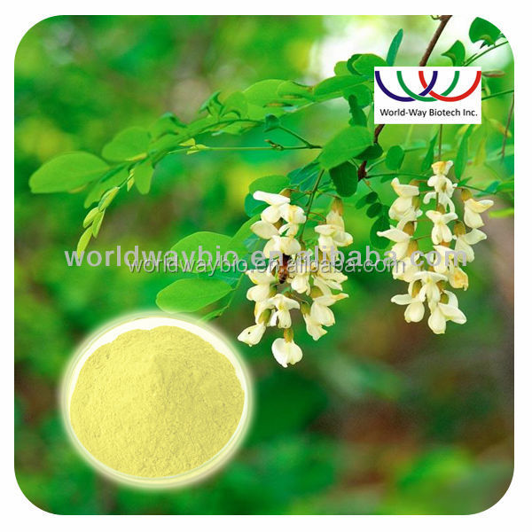 Quercetin powder Sophora Japonica PE /raw material Quercetin dihydrate Powder 95% 98% CAS 117-39-5