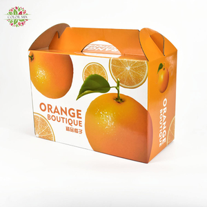 Wholesale Full Color Printing Ink Apples Oriange Fruit Corrugated Carrying Carton Box with Die Cut Handle
