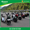 Gaea full suspension chopper bike fat tire electric motorcycle scooter 1000w