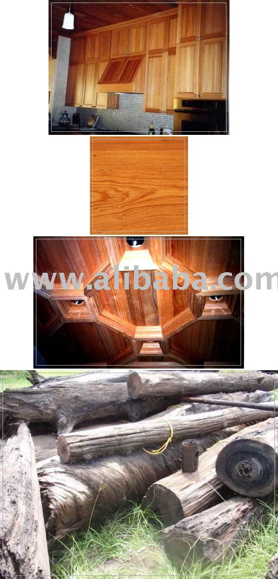 Cypress log, Timber or lumber