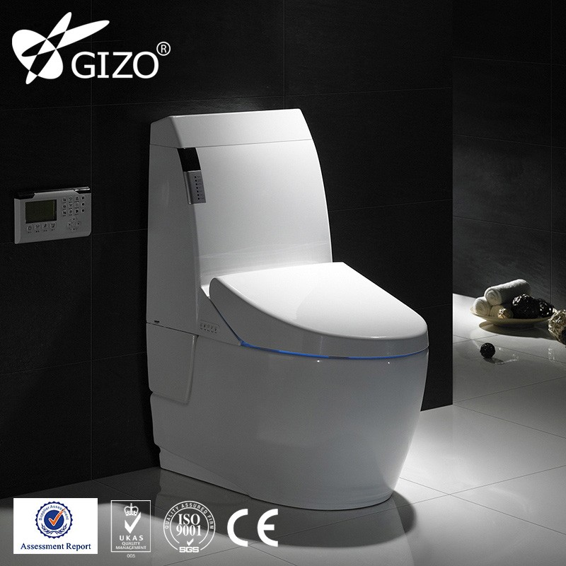 New Technology Self-clean Bidet Electronic Gold Toilet Bowl