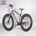 Beach cruiser bicycle snow bicycle frame FM190 fat bike carbon frame