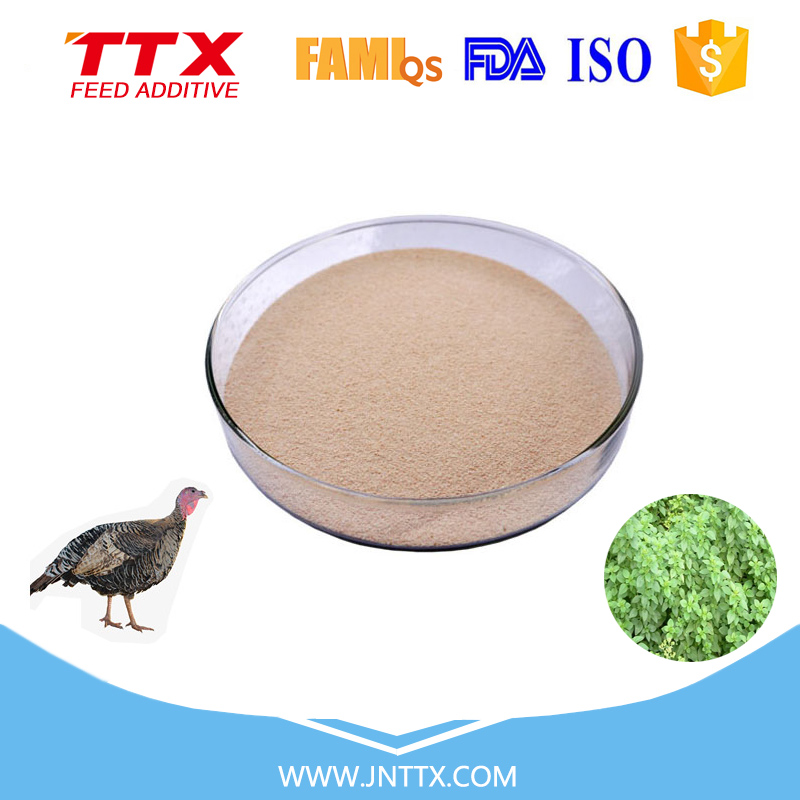 China factory poultry feed oregano premix wholesale
