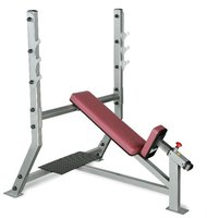 BODY SOLID Pro Club Line Series Incline Olympic Bench (SIB-359G)