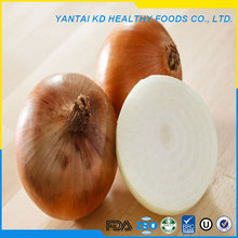 china baby dices onion
