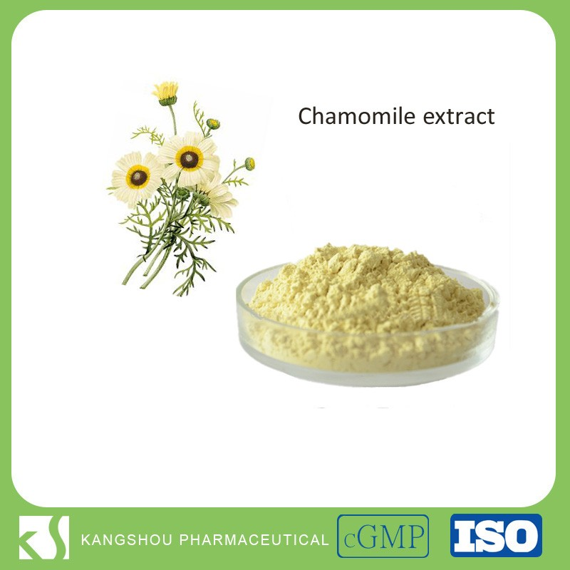 Organic Pharmaceutical grade Chamomile dried organic Chamomile extract
