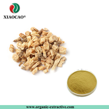 Glehnia littoralis extract/Radix glehniae extract/coastal glehnia root extract powder10:1 20:1
