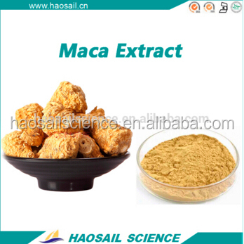 Maca extract powder with competitive price