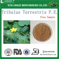 plant extract powder tribulus terrestris