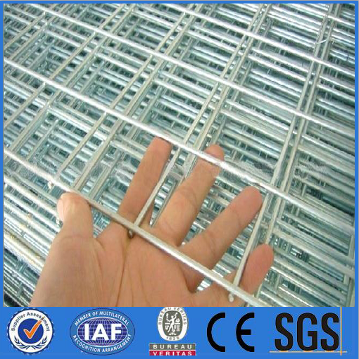 hot selling,anping high quality bird cage galvanized welded wire mesh panels for chicken cage manufacturer