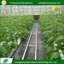 Greenhouses Irrigation System