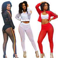 Latest Transparent Sexy Sport Fitness 2 Piece set Jogging Suits wholesale Sport wear For Woman