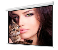 Big size motorized projector screen size