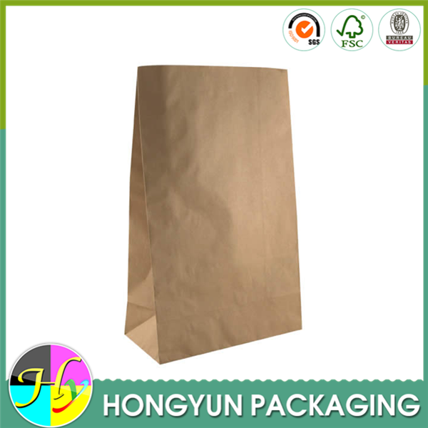 Biodegradable brown kraft paper bag design no handle