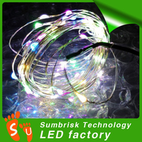 Wholesale holiday decoration 12 volt led christmas lights