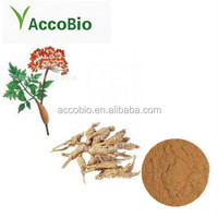 100% Natural Herb Angelica Dong Quai, Angelica Sinensis Extract powder
