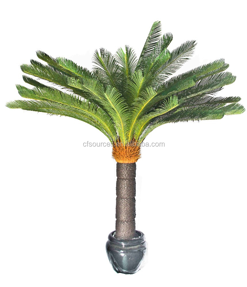 Tropical Plants Artificial Cycas Palm Trees