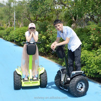 Facotry direct sale 72v lithium battery 2 wheels self balancing electric golf trolley