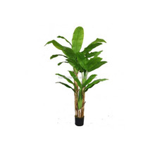 Fresh artificial banana plant for indoor ornamental
