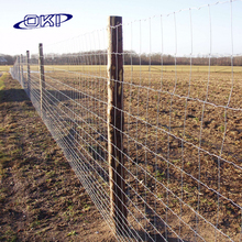 Hot dipped galvanized fixed knot field fence/cattle fence/sheep fence