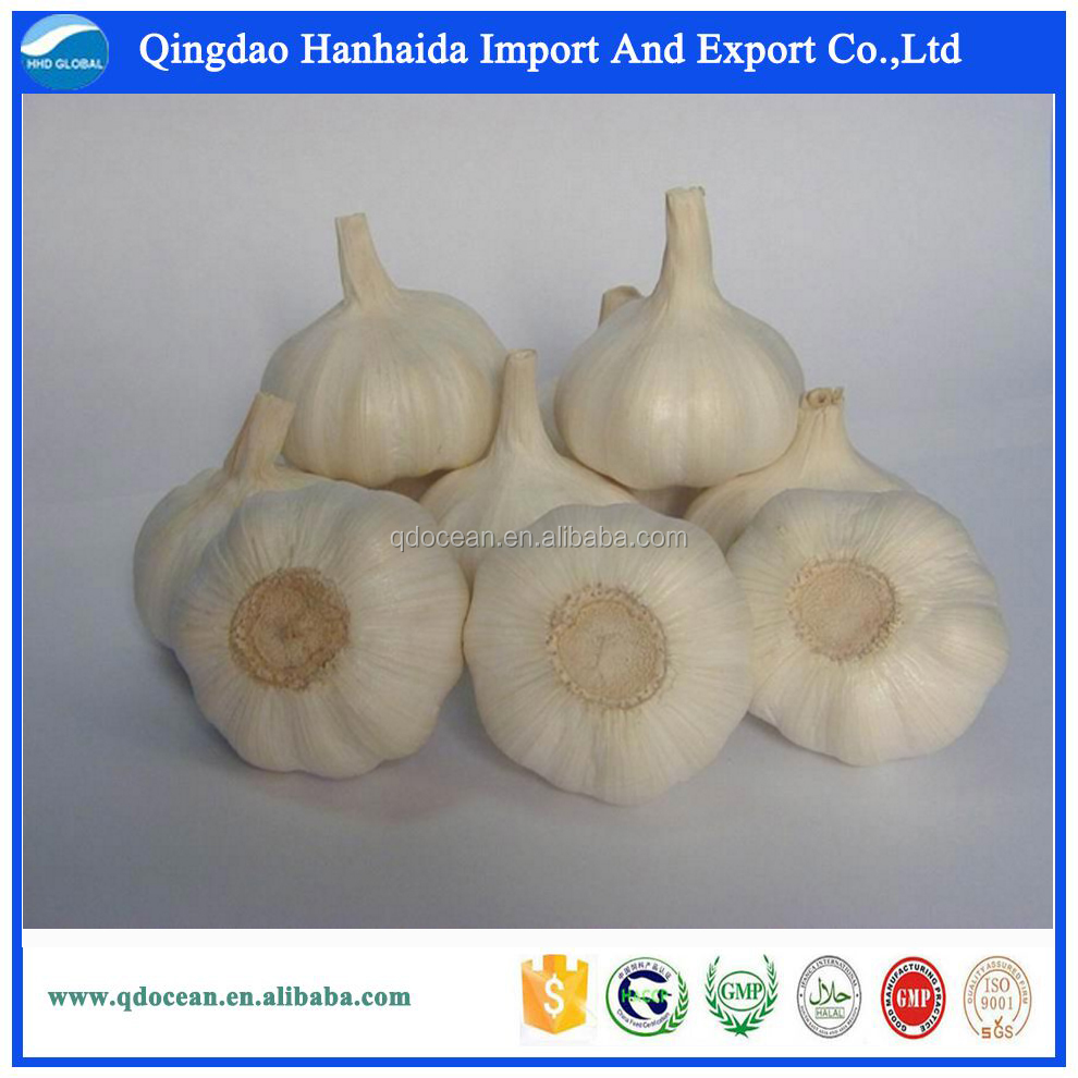 Factory supply high quality fresh natural garlic price for sale !