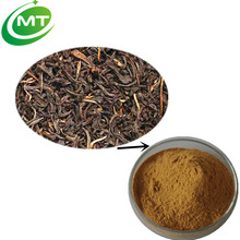 High quality 30% polyphenols Instant Black Tea Extract/Black Tea Extract powder