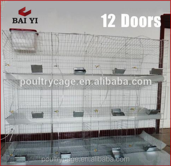 Strong Metal Galvanized Wire Mesh Rabbit Cage (China Supplier, Direct Sale, Good Quality)
