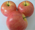 3PCS Artificial Weighted Red Apples Faux Fruits Fake Fruits for Home Decor