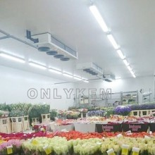 flower cold storage cold room cooling system price